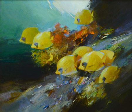 sered-koraliv-ii